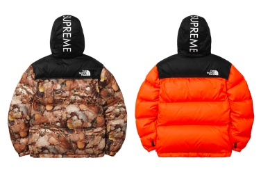 478-supreme-north-face-fw16-3