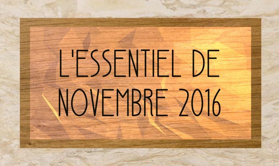 1709d0ae2717 L essentiel de novembre 2016